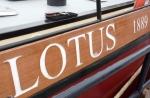 lotus.5