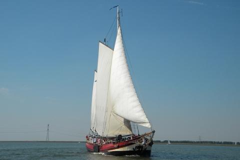 anna-van-elburgh
